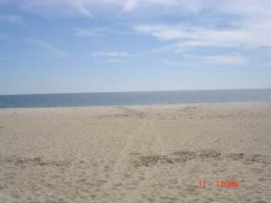 Cape Cod - Craigville Beach
