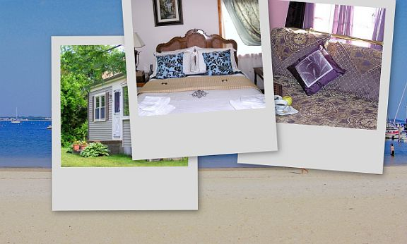 cape cod pet friendly rental